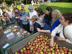Apple Day cake judging - Forest Row - Photo Mike Grenville